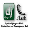 Python Django and Flask developer suit.png
