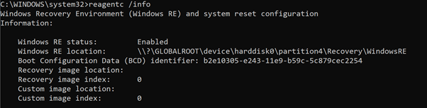 Command Prompt example of the reagent.exe/info command