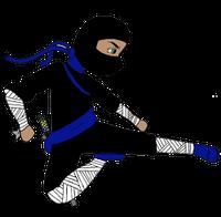 MDI-Ninja.png